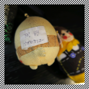 bag_item11